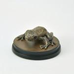 Brauner Fliesenfrosch